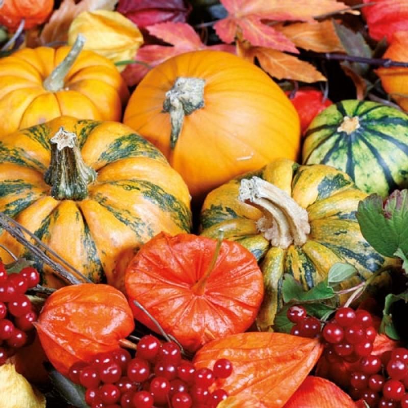 Ambiente Servietten Autumn Harvest Kurbis Ernte Im Herbst Kurbiss