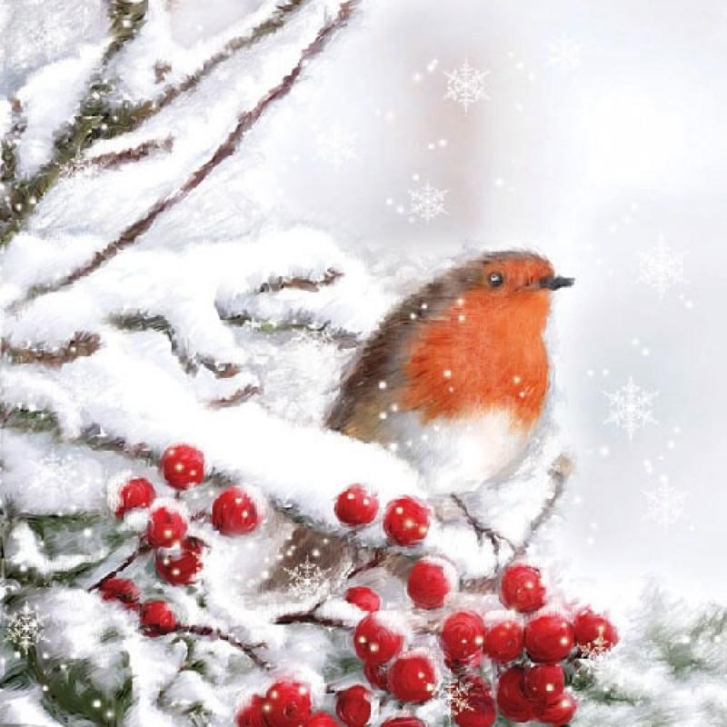 Ambiente Servietten Robin in snow. Rotkehlchen im Schnee. Vogel ...