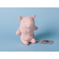 Maileg Noah's Friends Schwein Mini