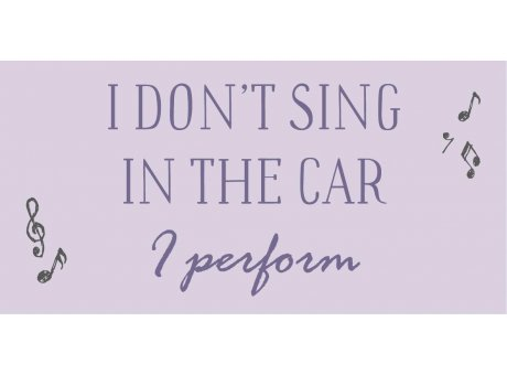IB Laursen Magnet I don't sing in the car I perform