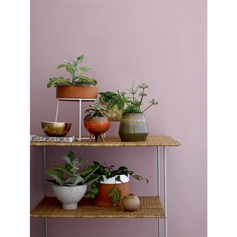 Bloomingville Aluminium Bowl klein Schale matt gold mit Grünpflanzen