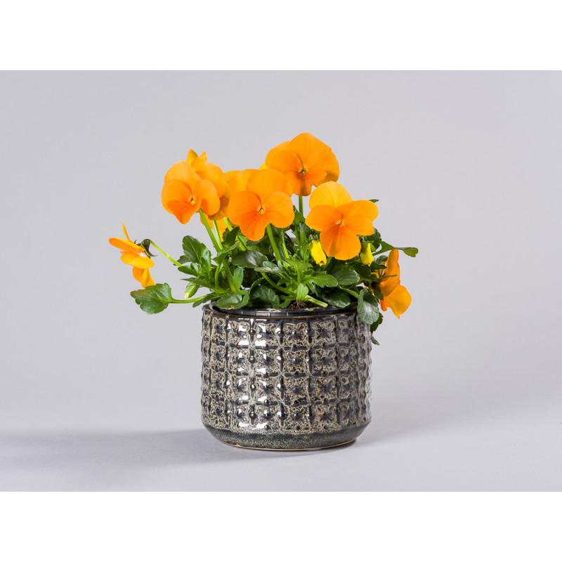 Bloomingville Blumentopf Grau mit Struktur aus Keramik modern rustikal Übertopf Durchmesser 10 cm mit Blume Hornveilchen