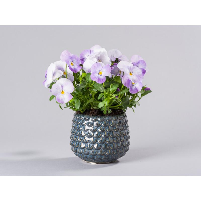 Bloomingville Blumentopf Grau Tropfen erhaben Struktur Keramik Übertopf für Fensterbank mit Topfpflanze