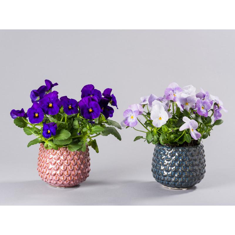 Bloomingville Blumentopf Grau und Rot Tropfen Struktur erhaben Keramik Übertopf für Fensterbank mit Topfpflanze Gruppe