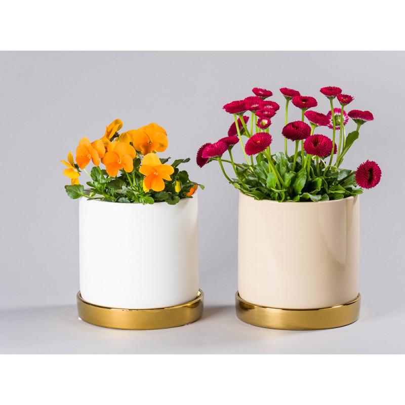 Bloomingville Blumentopf Natur Beige und Weiß mit Untersetzer Gold für Fensterbank Deko Modern