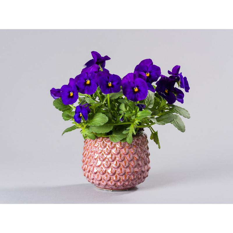Bloomingville Blumentopf Rot Tropfen 3D Struktur Keramik Übertopf für Fensterbank mit Topfpflanze