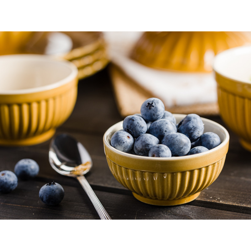 IB Laursen Mynte Shop Geschirr Deko für den Tisch Gelb Senfgelb Mustard Schalensatz Mini mit Beeren Teller und Tortenplatte