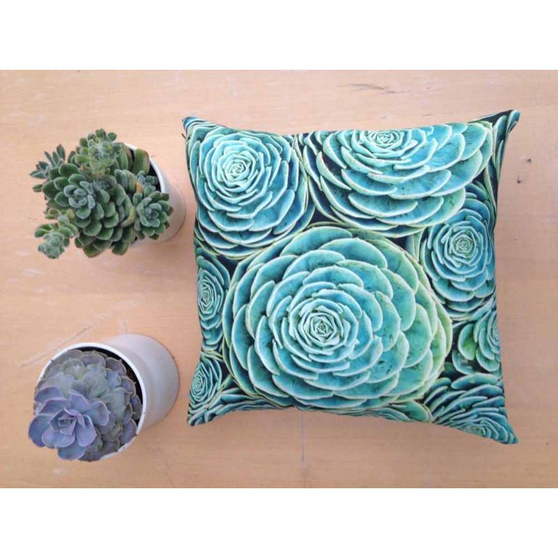 pad concept kaktus kissen succulent mit gr nen sukkulenten kissenh lle aus baumwolle. Black Bedroom Furniture Sets. Home Design Ideas