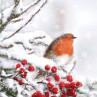 Ambiente Weihnachts Servietten Robin in snow Rotkehlchen im Schnee Weihnachten