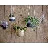 Bloomingville Blumentopf Hänger Natur mit Leder Bändern zum Aufhängen verschiedene Formen und Farben