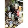 IB Laursen Gießkanne Weiss 2,7 Liter mit Griff aus Metall dekorativ modernes Design verschiedene Farben