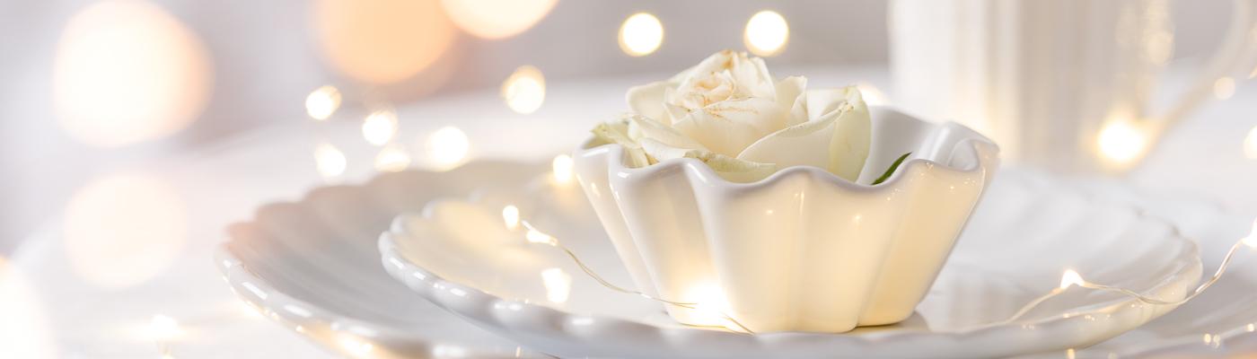 Festliche Hochzeitsdeko Tischdekoration Tisch Feier für Gaeste mit Mynte Geschirr Teller Becher und Muffinform in weiss